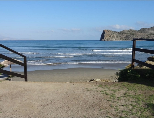 Elia Agia Marina Beach Hotel